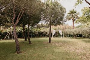 A garden outside Palas Pineda