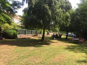 A garden outside La Maison des Joel's