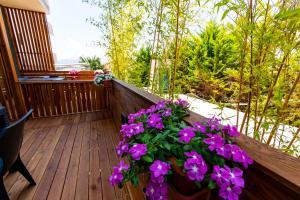 A balcony or terrace at Hotel Apollon