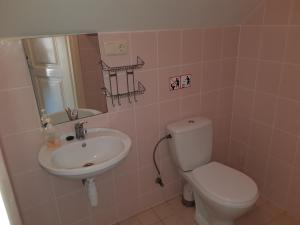 Vonios kambarys apgyvendinimo įstaigoje Gaspada