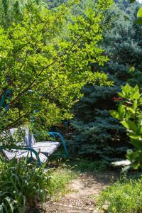 Сад в Домашний пансионат Натали