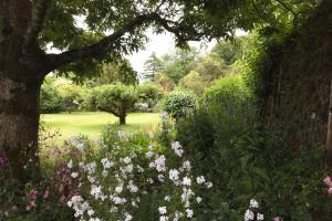A garden outside Willowhill House