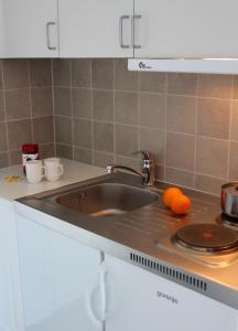 Кухня или мини-кухня в Hotel Avannaa