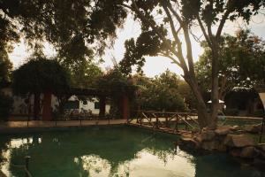 Бассейн в Hotel Majoro или поблизости