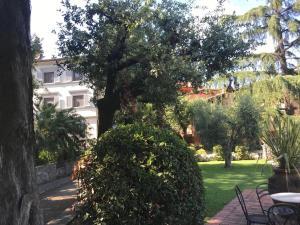 A garden outside Villa Maria Hotel
