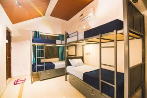 A bunk bed or bunk beds in a room at Zostel Mysore
