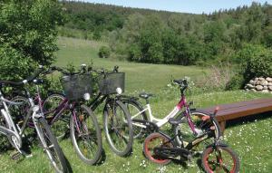 Radfahren an der Unterkunft Ferienhaus Waldstr. R oder in der Nähe