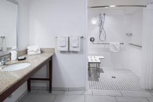 A bathroom at Hampton Inn St Louis- at the Arch