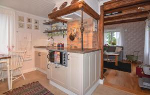 Ett kök eller pentry på Studio Holiday Home in Larv