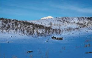 Three-Bedroom Holiday Home in Hol i Tjeldsund during the winter