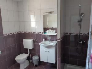 A bathroom at Apartments and rooms with parking space Vranovaca, Plitvice - 17461