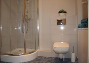 Łazienka w obiekcie Silver Apartment Gdansk 15 min to old town