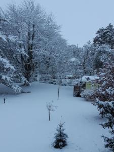 L'établissement Le Domi en hiver