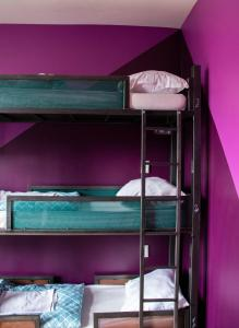 A bunk bed or bunk beds in a room at Amsterdam Hostel Leidseplein