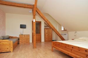TV a/nebo společenská místnost v ubytování Rodinné ubytování Debrné