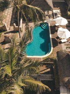 A view of the pool at Tentacle Bali or nearby