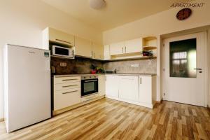 A kitchen or kitchenette at Hotel Otakar