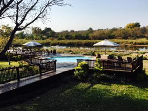 The swimming pool at or near Sabie River Bush Lodge
