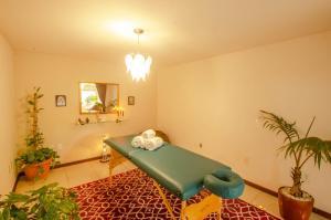 Spa and/or other wellness facilities at Pousada Borboleta