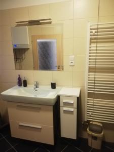 Koupelna v ubytování Apartmány pod Divadlem