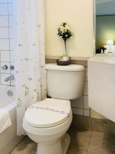 Salle de bains dans l'établissement Motel La Cheminée