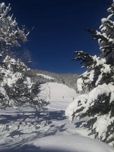 Walchauhof im Winter