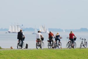 Radfahren an der Unterkunft Residenz Albatros oder in der Nähe