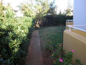 Κήπος έξω από το Διαμερίσματα Δήμητρα