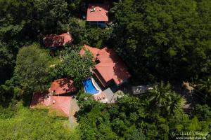 A bird's-eye view of Casa del Toucan