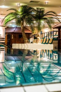 Der Swimmingpool an oder in der Nähe von Mauritius Hotel & Therme