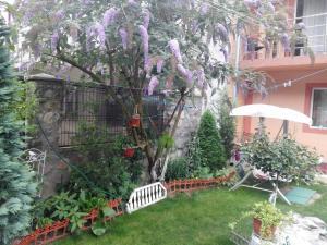 A garden outside VILA ANA