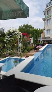 The swimming pool at or near Hotel Rai