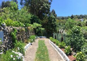 Jardín al aire libre en Finca San Pablo Icod de los Vinos