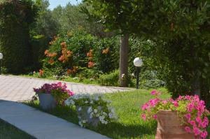 A garden outside Porto Blue Studios