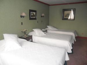 Cama o camas de una habitación en Hotel Isla Rey Jorge