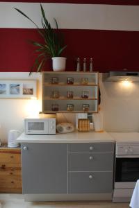 Kuchyň nebo kuchyňský kout v ubytování Cosy Appartement close to City