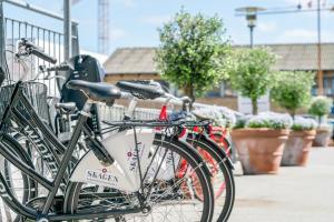 Cykling ved Skagen Harbour Hotel eller i nærheden