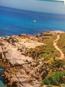 Vue panoramique sur l'établissement Clos des Vignes Pampelonne Vineyard