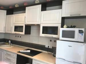 A kitchen or kitchenette at Апартаменты у озёра