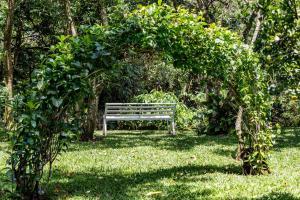 A garden outside La Terraza Guest House