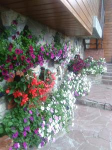 Сад в Зураткуль - Дом Таежника