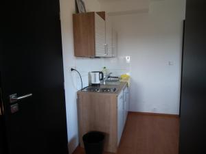 Kuchyň nebo kuchyňský kout v ubytování Penzion Výhledy na Brdy