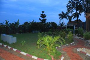 A garden outside Mutundwe Villa