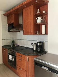 Kuchyň nebo kuchyňský kout v ubytování Apartment Chalet Kladska