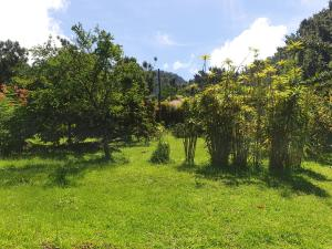 A garden outside Ti Kwen Glo Cho