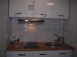 A kitchen or kitchenette at APARTAMENTY CENTRUM PAŁACOWA