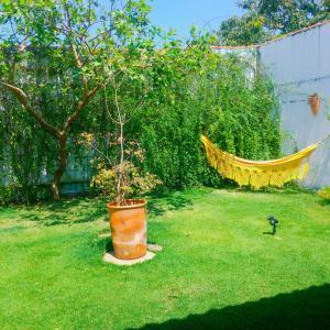 Um jardim em Casa de Sarasvati