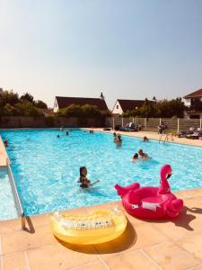Het zwembad bij of vlak bij Zeepark Zeewind