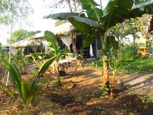 A garden outside Bohemyan Blue Stay