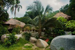 A garden outside Casa Hostal Villa Del Rio